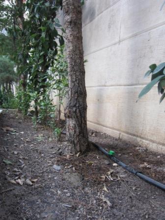 آبیاری اتوماتیک حیاط باغچه